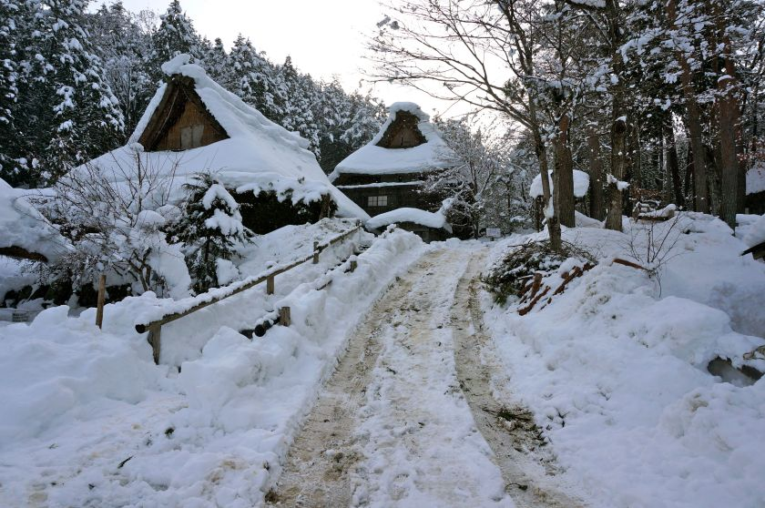 Beautiful quiet Hida Folk Village. Due to heavy snowfall, the buses did not run in the morning, so it was after lunch that we managed to catch the bus for the 15min journey uphill to this lovely attraction.
