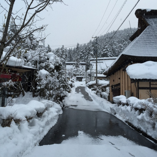 Such beautiful winterscapes. Missing it lots!