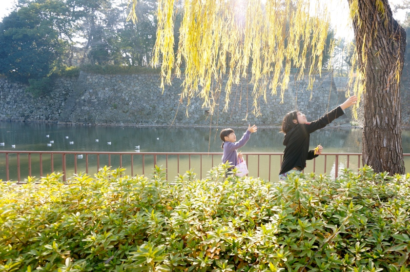 V caught this beautiful photo of the girls on the banks of the Nagoya Castle moat.