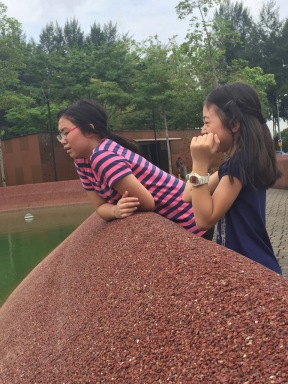 Looking for Terrapins
